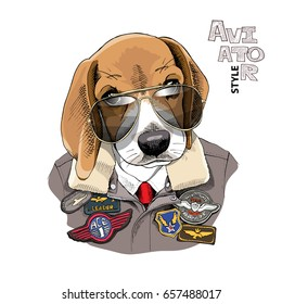 Portrait of the Beagle in a Aviator Glasses and Leather Jacket with a Sewing Embroidery Patch. Vector illustration.