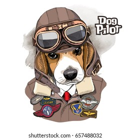 Portrait of the Beagle in a Aviator Helmet and Leather Jacket with a Sewing Embroidery Patch. Vector illustration.