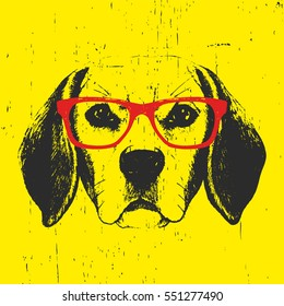 Portrait of Beagle Dog with glasses. Hand drawn illustration. Vector.