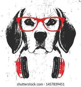 Portrait of Beagle with glasses and headphones. Hand-drawn illustration. T-shirt design. Vector