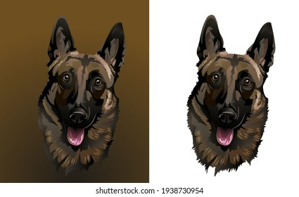 Portrait of a Belgian Shepherd for the logo  Set for logo and chevron   Surprised funny dog of the malinois breed