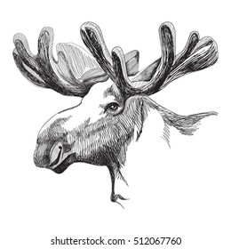 Portrait of a big moose with antlers in graphic style on a white background