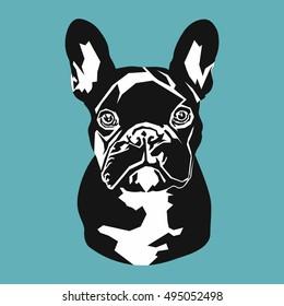portrait of a black French bulldog