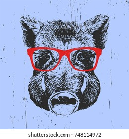 0b3ddf76e6b1 Portrait of Boar with glasses