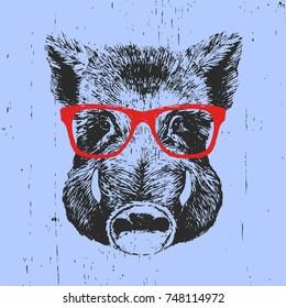 0b3ddf76e6b1 Portrait of Boar with glasses