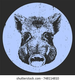 Portrait of Boar, hand-drawn illustration, vector