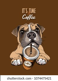 Portrait of a Boxer Dog with a coffee to go on a brown background. Vector illustration.