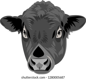 portrait of a bull