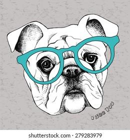 Portrait of a bulldog in glasses. Vector illustration.