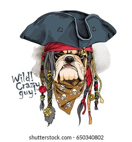 Portrait of a bulldog in Pirate hat, bandana and with a dreadlocks. Vector illustration.
