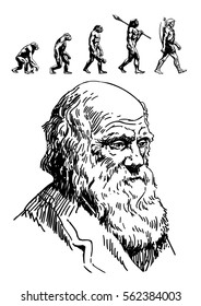 Portrait of Charles Darwin and evolution of man. Hand drawn sketch style vector illustration isolated on white background.