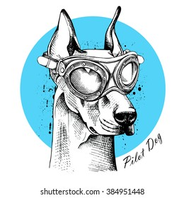 Portrait of a Doberman in Pilot's glasses on blue background. Vector illustration.