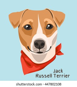 Portrait of a dog breed Jack Russell terrier with a bandage around his neck