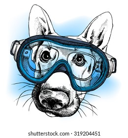 Portrait of a dog German shepherd in a diving mask on blue background. Vector illustration.