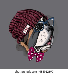 Portrait of a dog St. Bernard in a hipster knitted vinous hat and in a polka-dot tie and with glasses. Vector illustration.
