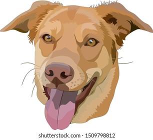 Portrait of dog. Vector illustration, EPS10