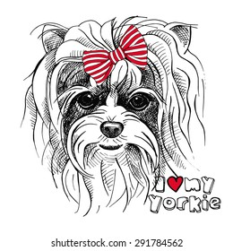 Portrait of a dog Yorkshire terrier with a bow. Vector illustration.