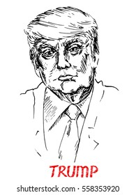 Portrait of Donald Trump the President-elect, drawn by hand vector illustration, simple lines drawing