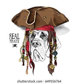 Portrait of a English Mastiff in Pirate hat, bandana and with a dreadlocks. Vector illustration.