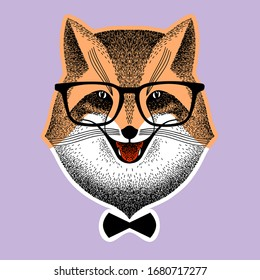 portrait of a fox in glasses. fox with bow-tie. Fox hipster style. Stylized vector illustration of handmade. sly fox smiles. Sketch for poster, print or t-shirt. Liar, Dodger, mischievous, deceiver.