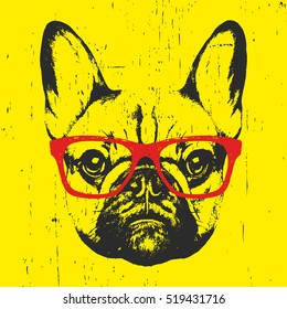 Portrait of French Bulldog with glasses. Hand-drawn illustration. T-shirt design. Vector
