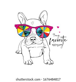 Portrait of a French Bulldog puppy in a rainbow glasses. Funny Cartoon Characters. Humor card, t-shirt composition, hand drawn style print. Vector illustration.