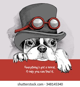 Portrait of a French Bulldog wearing steampunk top hat with glasses. Vector illustration.