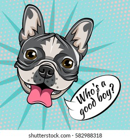 0a3e6d05083 Portrait of French Bulldog. Who is a good boy. Vector illustration isolated  on pop