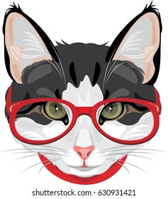 Portrait of a funny cat with red glasses. Vector