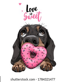 Portrait of a funny Dachshund dog with pink heart Donut. Love is sweet - lettering quote. Humor card, t-shirt composition, hand drawn style print. Vector illustration.