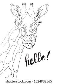 Portrait of a funny giraffe, cartoon giraffe character. Hand drawn giraffe. Sketch style. Illustration. Vector.