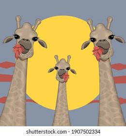 Portrait of funny giraffes. Animal character vector illustration.