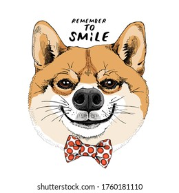 Portrait of the funny Shiba Inu dog in the red polka dot bow tie. Humor card, t-shirt composition, hand drawn style print. Vector illustration.