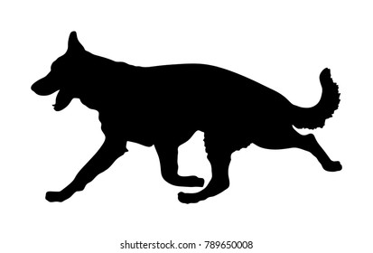 Portrait of German Shepherd running dog vector silhouette isolated. German Shepherd. man's best friend. Lovely pet running. Dog show exhibition. Finder detect explosives and drugs. Rescue finding dog.