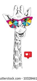 Portrait of a Giraffe in a bright coloring glasses. Vector illustration.