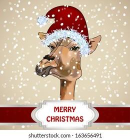 Portrait Of A Giraffe In A Christmas Hat