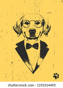 Portrait of Golden Retriever in suit, hand-drawn illustration
