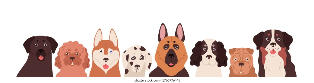 Portrait group of funny dogs different breeds posing together vector flat illustration. Cute colorful domestic animals isolated on white background. Various amusing purebred doggy