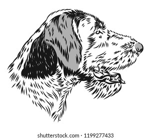 Portrait of a gun dog. Freehand drawing