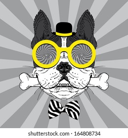 Portrait of Happy French Bulldog in bowler hat, big round glasses and striped bow with bone
