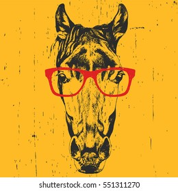 Portrait of Horse with glasses. Hand drawn illustration. Vector