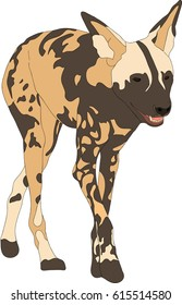 Portrait of a hungry and firerce wild dog, hand drawn vector illustration isolated on white background