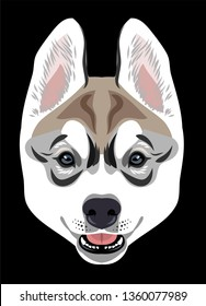 Portrait of a Husky dog puppy