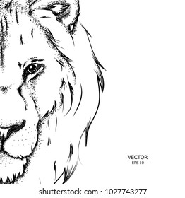 Lion Outline Drawing Images : Including transparent png clip art, cartoon, icon, logo, silhouette, watercolors.
