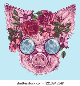 The portrait of a little pig with roses wreath and round sunglasses, sign of the year 2019. Hand-drawn vector illustration of a realistic animal head.