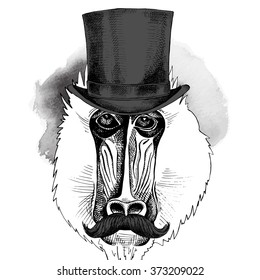 62b4b3e77d1 Portrait of a Mandrill with mustache wearing hat bowler. Vector illustration .