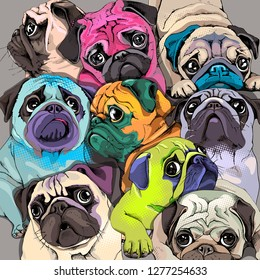 Portrait of many pugs. Composition in a bright coloring Pop Art style. Humor card, t-shirt composition, hand drawn style print. Vector illustration.