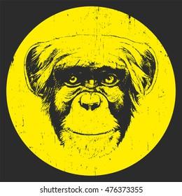 Portrait of Monkey. Hand-drawn illustration. T-shirt design. Vector