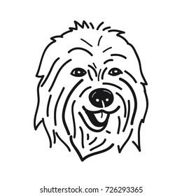 portrait of Old English Sheepdog Breed on White Background,Vector illustration
