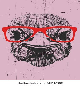 Portrait of Ostrich with glasses, hand-drawn illustration, vector